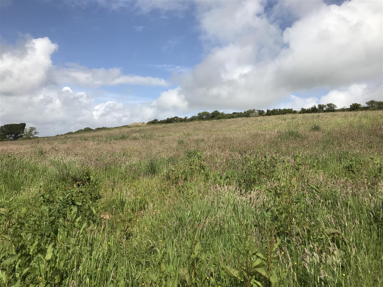 Danyquarry land
